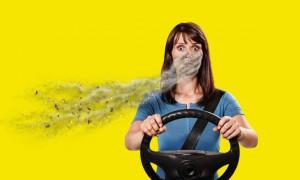 Выбираем лучший салонный фильтр для автомобиля: рейтинг 2020 года