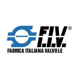 FIV (Италия)
