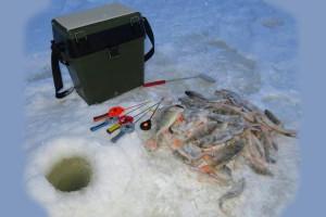 Всё своё ношу с собой: рейтинг лучших ящиков для зимней рыбалки 2021 года
