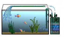 Рейтинг лучших внешних фильтров для аквариума 2020 года для любителей «домашних» морских обитателей