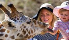 Для любителей флоры и фауны: рейтинг самых больших зоопарков в мире