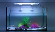 10 лучших ламп для аквариума: рейтинг 2020 года