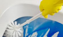 Для чистоты и гигиены: рейтинг лучших средств для чистки унитазов по отзывам потребителей