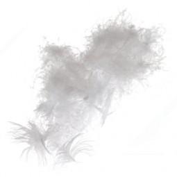 Пух-перо
