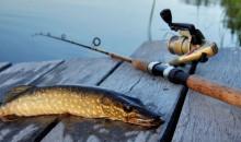 Ловись рыбка большая и маленькая: рейтинг лучших плетёных шнуров для рыбалки в 2020 году