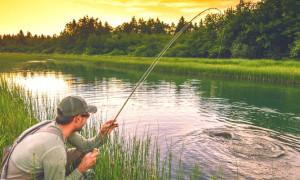 Ловись, рыбка, большая и маленькая: рейтинг лучших лесок для рыбалки 2020—2021 года
