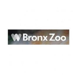 Бронкс, Нью-Йорк