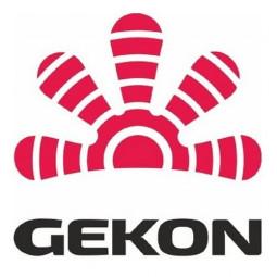 Gekon (Италия)