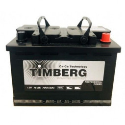 Timberg Professional Power