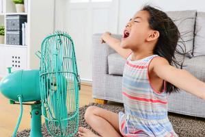 Прохлада без лишнего напряжения – рейтинг лучших вентиляторов для дома 2020 года