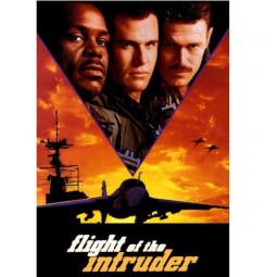 Полёт «Нарушителя» (1991 г.)