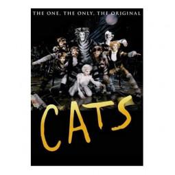 «Кошки»