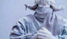 Рейтинг лучших зимних курток для мужчин в 2020 году по мнению пользователей