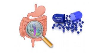 Рейтинг лучших пробиотиков на 2020 год для профилактики и лечения дисбактериоза
