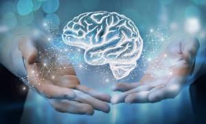 Вернуть память поможет пилюля: рейтинг лучших ноотропных препаратов в 2020 году