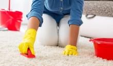 Рейтинг лучших средств для чистки ковров – топ самых востребованных и эффективных очистителей