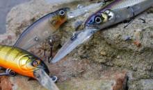 Ловись рыбка большая и маленькая: рейтинг лучших китайских воблеров с Алиэкспресс 2020 года