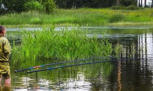 Наслаждайтесь процессом ловли: рейтинг лучших маховых удилищ для рыбалки 2021 года