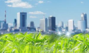 Рейтинг самых чистых городов России в 2020 году