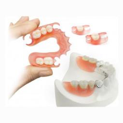Съёмный сегмент зубного ряда
