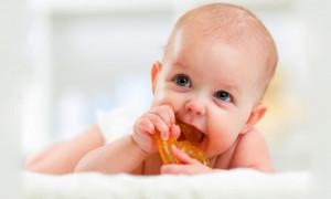 Зубками его, зубками: рейтинг лучших прорезывателей для зубов новорождённого на 2020 год