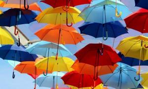 Топ-12 лучших производителей зонтов в 2020 году